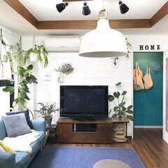 植物/観葉植物/グリーンのある暮らし/グリーン/DIY/雑貨/... GWですが旦那さんがお仕事なので 我が家…