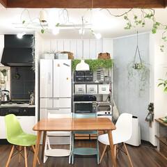 スチールラック/リビングダイニング/リビング/インテリア/DIY/無印良品/... 我が家はキッチンとリビングが同じ部屋にあ…