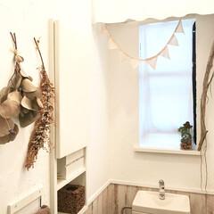 ナチュラル/流木/ドライフラワー/板壁風壁紙/漆喰壁/トイレDIY/... うちには二つトイレがあるんですが、写真は…