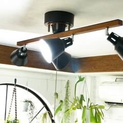 シーリングライト/照明/DIY/雑貨/100均/インテリア/... リビング照明の写真(^ ^) ネットで購…