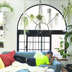 植物のある暮らし/グリーンのある暮らし/モモナチュラル/ソファ/インテリア/DIY/... 習い事のサッカー前にソファでくつろぐ息子…