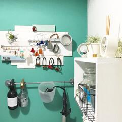 アクセサリー/アクセサリー収納/インテリア/洗面所インテリア/洗面所/グリーン/... 洗面所の写真(^^)/  アイデア記事で…