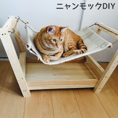 猫用ハンモックDIY/ニャンモックDIY/猫用ハンモック/ニャンモック/犬猫以外もいいぞ派/猫派/... 端材を使って、ハンモック好きな飼い猫のニ…