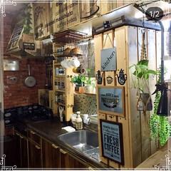 フェイクグリーン/観葉植物/調味料ラック/カフェ風インテリア/男前インテリア/DIY/... 我が家のキッチンです。 男前とカフェ風m…