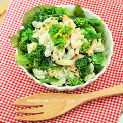 マカロニサラダ/マカロニ/サラダ/豆乳マヨネーズ/豆乳/レシピ カラフルなマカロニと菜の花、ブロッコリー…