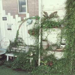 玄関先/DIY/ワイヤープランツ/お庭風 DIYしてお庭風にした玄関先です♡今年の…
