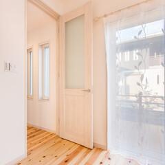 リビングドア/ハイタイプ/無垢 ハイタイプのリビングドア。