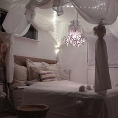 フェアリーライト/ライト/ベッドルーム/ベット/寝室/天蓋 天蓋に、天井ライトでリゾートナイト♪ お…