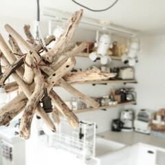 boho/ボヘミアン/流木照明/流木 DIY/流木インテリア/流木 流木で作った照明。インテリアに馴染む天然…