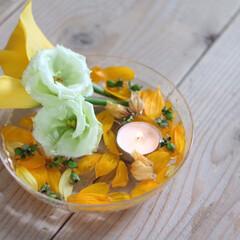 キャンドル/フロート/花のある暮らし/花/夏インテリア 知り合いからいただいたお花♬  散ってし…(1枚目)