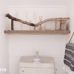 流木DIY/流木/棚/タオルハンガー トイレのインテリアは、棚とタオルハンガー…
