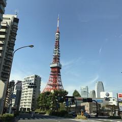 建築 東京といえばこれですね! こちらに来て早…