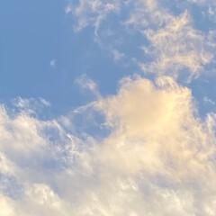 暖かい日/December/ディセンバー/師走/冬/空の写真/... こんばんは(o^^o) いつもありがとう…