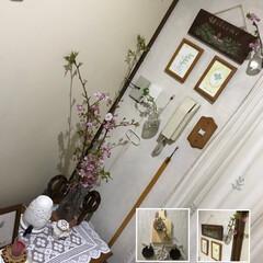 SAKURA/玄関インテリア/玄関/お片付け/お片づけ/清掃/... こんばんは(o^^o) いつもありがとう…