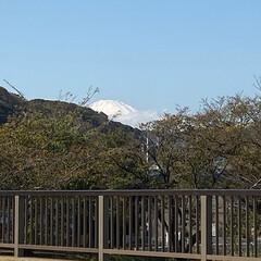秋の富士山/ナチュラルな暮らし/ナチュラル/晴れ/景色の写真/景色/... こんばんは(o^^o) いつもありがとう…