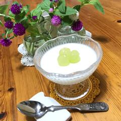 デザートグラス/ミルク形/おいしい/オイシイ/美味しい/ぶどう/... こんにちは(o^^o) いつもありがとう…