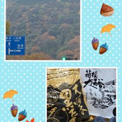 お出掛け/お出かけ/美味しい/景色/外出/大涌谷黒玉子/... こんばんは(o^^o) いつもありがとう…