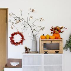 おもちゃかぼちゃ/ハロウィン/秋 ハロウィンの飾りつけ。