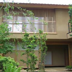 中庭/野趣/庭越しに観る 中庭越しに住宅棟を見たところ