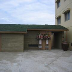 アプローチ/緑化屋根/洗い出し 明石大倉海岸の家  緑化屋根とアプローチ