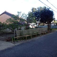 セルフ 板塀/竹/簡易 セルフで以前のネットフェンスの支柱を利用…
