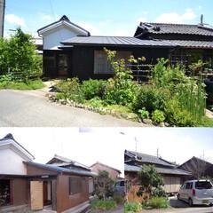古民家/庭/山野草/改修/整備 上が現在の写真 下が整備前の写真