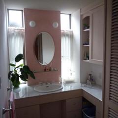 洗面/漆喰/イタリア磨き/左官 たつの市「楓舎」 ピンクの壁は左官の漆喰…