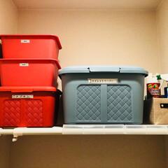 テプラ/トイレ/ダイソー/収納 買ってきたトイレペーパー達をむき出しのま…