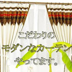 天蓋カーテン/レースカーテン/おしゃれなレースカーテン 突っ張り棒 レースカーテンおしゃれな飾り…