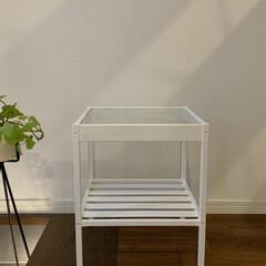 ミルクペイント 4ペンキ DIY 塗装 塗る ペイント 家具 大工 色付け 50mL ターナー | ターナー(ペンキ、塗料)を使ったクチコミ「初めて家具をペイントしてみました!  塗…」(2枚目)