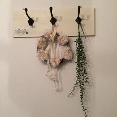 壁掛けフック/DIY/セリア セリアの板とフックで壁掛けフックを作りま…
