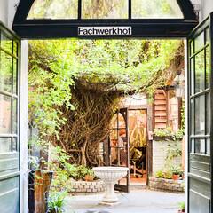 ベルリン/セレクトショップ/お洒落/グリーン/ガーデン/カフェ ベルリンのお気に入りセレクトショップ&カ…