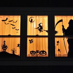 halloween/ハンドメイド/影絵/ウインドウディスプレイ/シルエット/窓/... 今年のではないのですが… https:/…(1枚目)