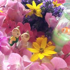 花/紫陽花/ラベンダー/シルバニアファミリー 見つめあう 2匹 ♪