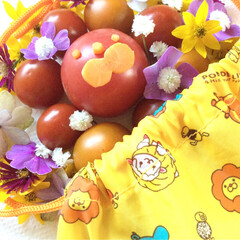 トマト/ドーナツ/花/子供 プチ★トマト シリーズ♪ ドーナツ屋さん…