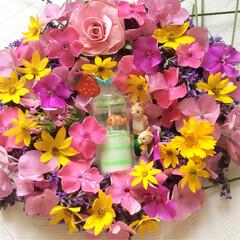 花/リース/手作り/フラワー キッチンの まな板の上に キッチンペーパ…