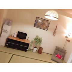 ウォーターサーバー/和室インテリア/賃貸マンション/インテリア/DIY/雑貨/...
