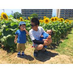 グリーンのある暮らし/花のある暮らし/年子/四人家族/ひまわり畑
