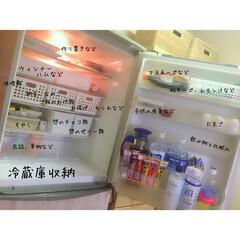 整理整頓/ナチュラルインテリア/冷蔵庫収納/ペット/インテリア/グルメ/... 冷蔵庫収納