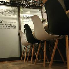 カフェ風/大改造/ワックス/カウンターテーブル/イームズチェア/和室リフォーム/... 和室大改造その5 和室を洋室にリフォーム…