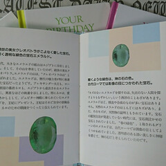 ドンキホーテ/家族/半額/占い/誕生日 以前、誕生日占いBOOKを家族分買ってみ…(4枚目)