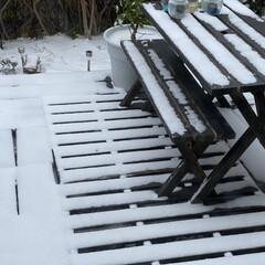 九州では珍しく雪/チーズタッカルビ/ラッポッキ/神社エール/宮地嶽神社 今年初投稿です(笑) 今更ですが今年もよ…(3枚目)