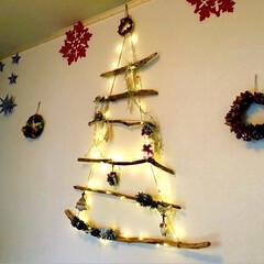 アレンジ/流木ツリー/イルミネーション/クリスマス/松ぼっくり/オーナメント/... 玄関入って正面の壁の流木ツリーにやっと飾…