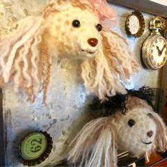 マグネット/あみぐるみ/編み物/雑貨/雑貨だいすき 何種類か編んでみたけど…😅 もう、何が正…