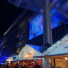 イルミネーション/クリスマスマーケット/小籠包/おでかけ/日曜日の夜 クリスマスマーケット始まってました🎶 こ…(2枚目)