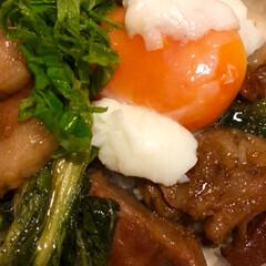 角煮丼/グルメ/フード/おうちごはん なんちゃって角煮丼‼️ 暑い💦でも角煮食…(3枚目)