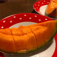 自家栽培/メロン/🍑の食べ比べ/リミ友さんに感謝/至福のひととき/おやつタイム/... 先日頂いた🍑🎶 贅沢に家族皆で食べ比べさ…(4枚目)