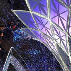 イルミネーション/クリスマスマーケット/小籠包/おでかけ/日曜日の夜 クリスマスマーケット始まってました🎶 こ…(3枚目)