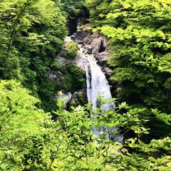 夏の風景/秋保大滝/日本の滝百選 探していたら涼しそうな滝のpicが見つか…(1枚目)