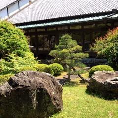 風景/庭園/新緑/精進料理/お出かけ 庭石の置き方1つひとつにも禅では意味があ…(1枚目)